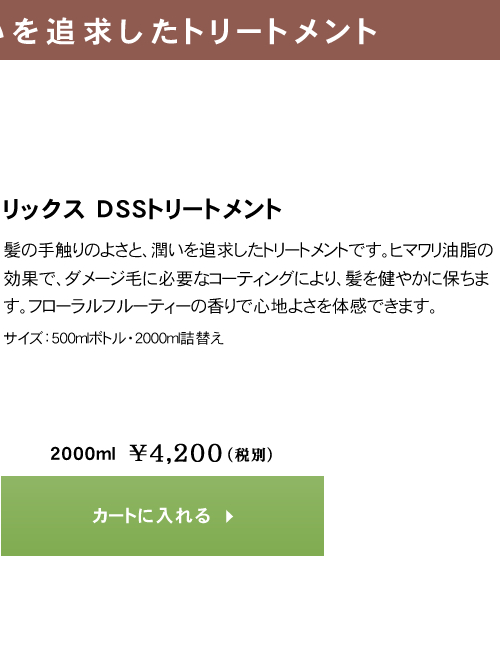 リックス DSS トリートメント class=