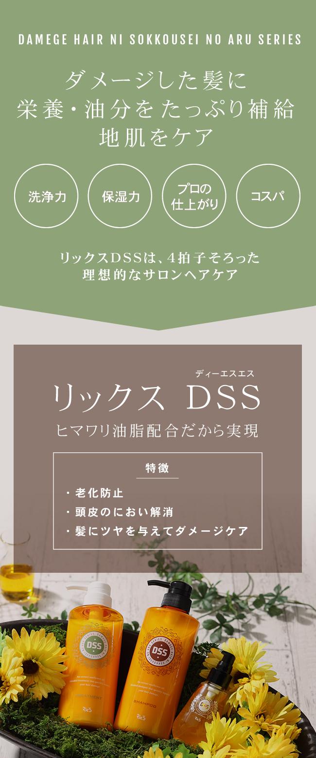 リックス DSS