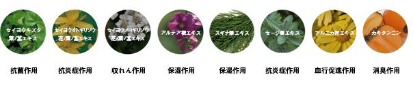 抗酸化・保湿成分配合